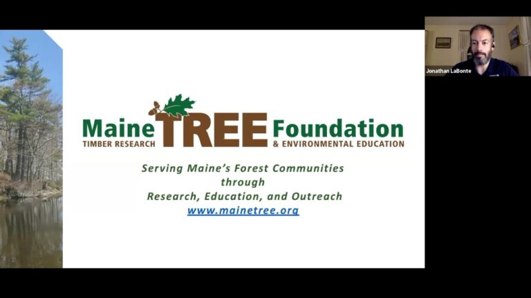 WEBINAR: Holt Research Forest Pre-Harvest Information Session