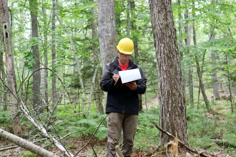 Connecting Maine Youth to Forest-based Careers